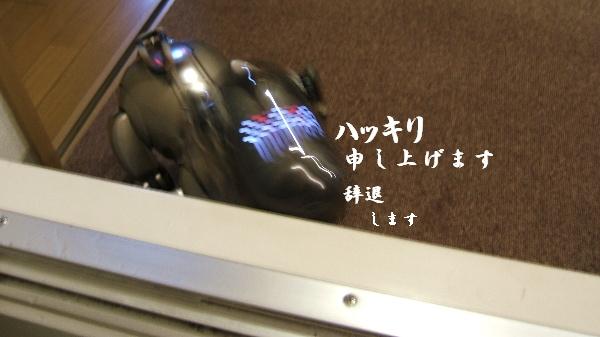 DSCF1232.JPG